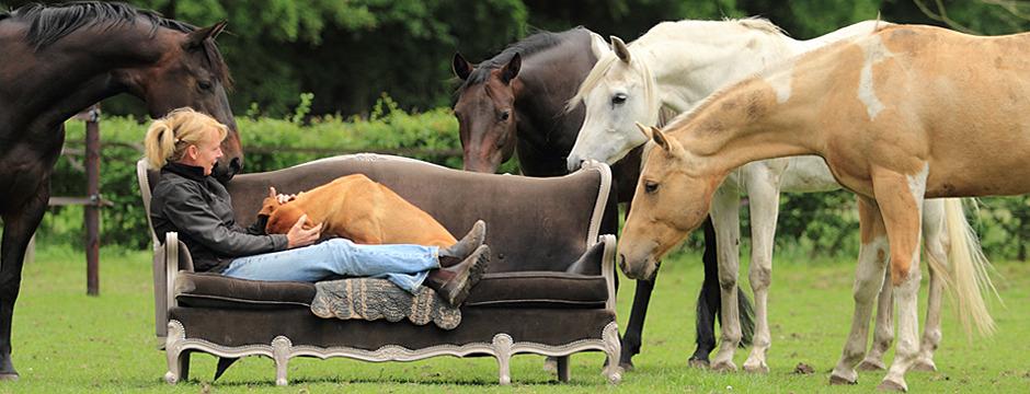 jenny-de-jong-natural-horse-sense-loenen